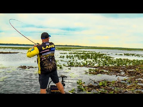 How To Flip & Pitch In Slop For GIANT Bass