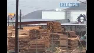 Vecinos del Fraccionamiento Del Bosque, en alerta constante por maderería