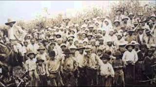 Lentil, native brazilians and immigrants