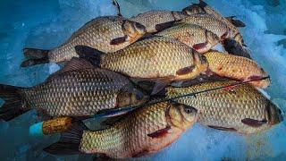 ЭТА СНАСТЬ ВОЛШЕБНАЯ ЛОВЛЯ КАРАСЯ ЗИМОЙ зимняя рыбалка на карася