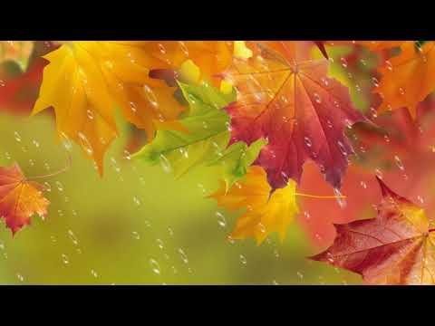 коллаж Осень золотая
