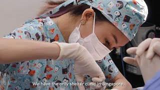 Life In Singapore's Only Community Animal Clinic (SPCA)