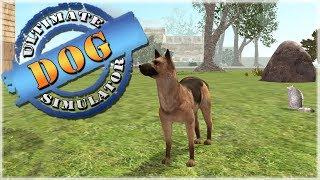 A Jail-Guard German Shepard?! 🐶 Ultimate Dog Simulator - Episode #6