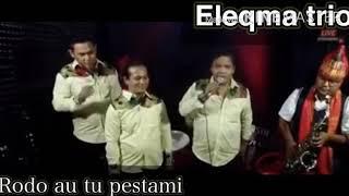 RODO AU TU PESTAMI( MALLAJAB BAHHH)  cover TRIO ELEQMA