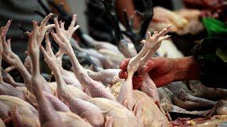 Эксперты Китая нашли COVID 19 в партии курицы из России