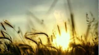 Rio Febrian - Tiada Kata Berpisah MP3