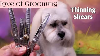 Thinning Shears, Blending Shears, Texturizing Shears and Chunkers