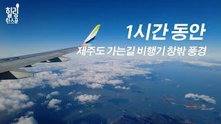 [랜선 여행] 1시간동안 비행기 타고 김포공항에서 제주…