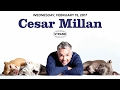 Cesar Millan | Lessons from the Pack