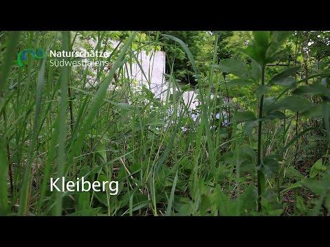 Kleiberg - Naturschätze