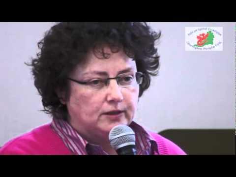 Welsh Assembly hustings: Elin Jones AM