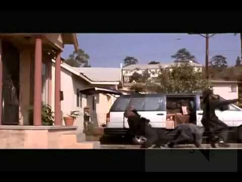 Dat Kitchen Work Doughman Feat Bigg Bo ( Menace 2 Society Edition).avi