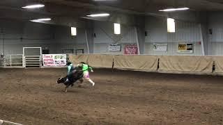 Rhett steer riding Sunday HYRA