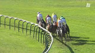 Vidéo de la course PMU PRIX DELAHANTE