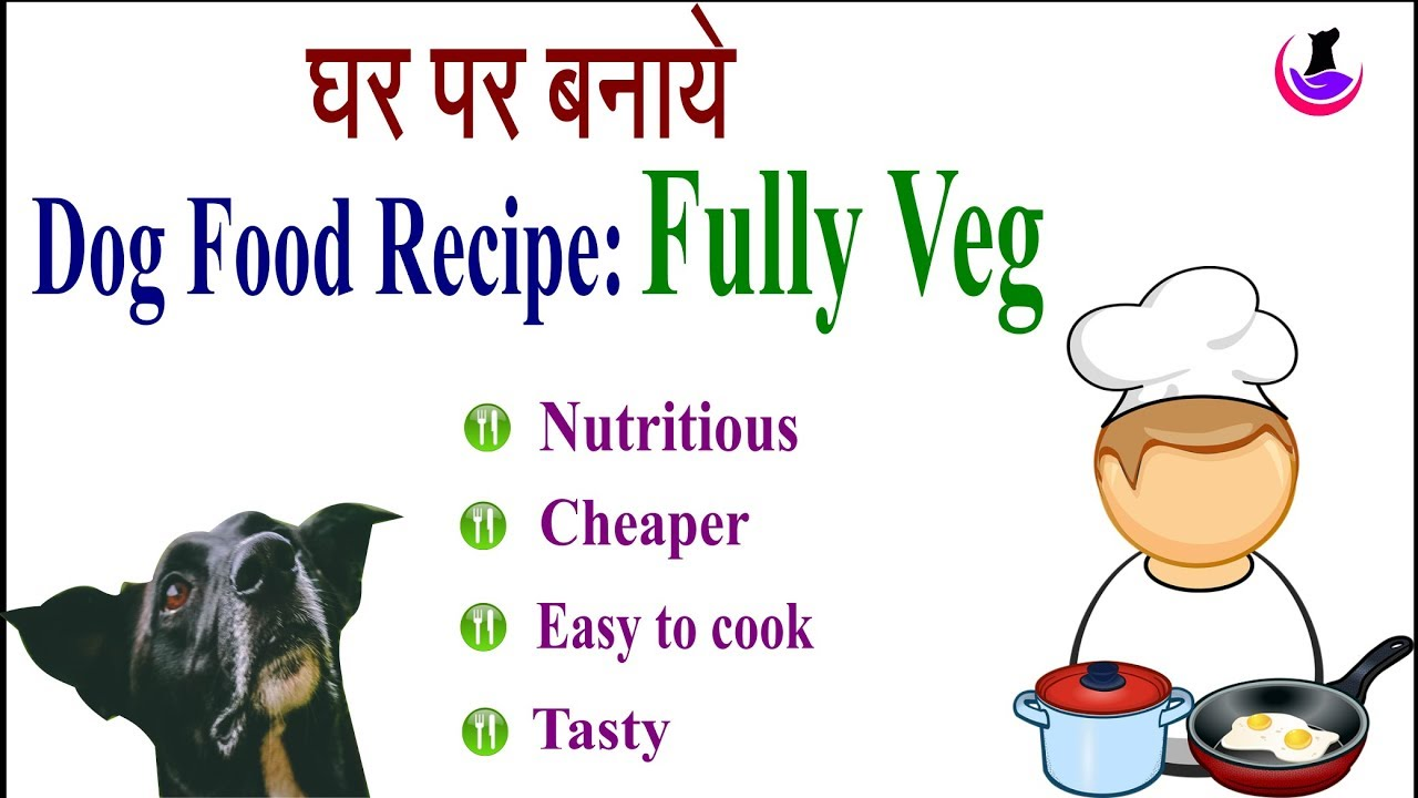 Nutritious Dog Food Recipe: Fully Veg in Hindi II dog and vet II ...