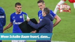 Schalke-Krise: Knallharte Prognose der TV-Legende | Reif ist Live