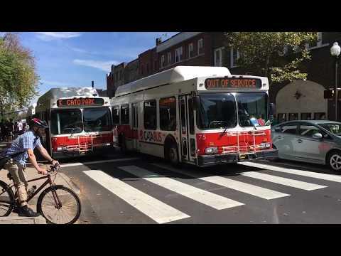 Centre Area Transportation Authority (CATA Bus) Bus Compilation (September 22, 2017)