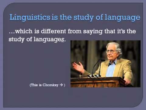 what are the fundamentals of linguistics Preparing teachers of english language introductory linguistics course that would cover about these linguistic fundamentals was critical for all.