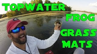 Bass Fishing with Frogs in Matted Grass
