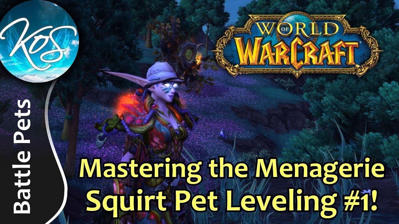 World of Warcraft: SQUIRT PET LEVELING STRAT #1 - WoW Battle Pet Strategy,  WoD, Draenor