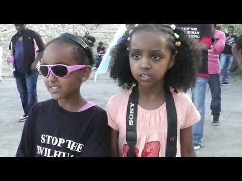 Eritrean Demonstration in Stockholm 27 July 2013 against  PFDJ Festival