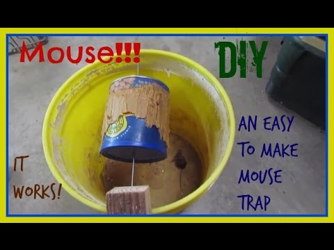 How To Make A Mouse Trap From A Five Gallon Bucket