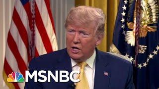 Journalist Eleanor Clift: Trump's Immigrant Roundups Are 'Terror' | The Beat With Ari Melber | MSNBC
