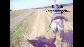 Ritt nach Heiligenstadt mit Ingrid