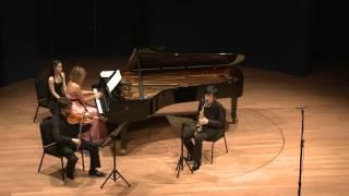Robert Schumann: Märchenerzählungen Op.132 - Trio Cézanne - 2/4