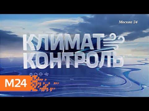 """""""Климат-контроль"""": какая погода ожидает москвичей в начале июня - Москва 24"""