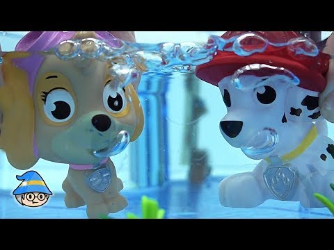 Paw Patrol Explore in the water. Find a Paw Patrol from the sand.