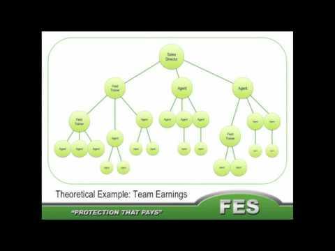 FES Compensation plan