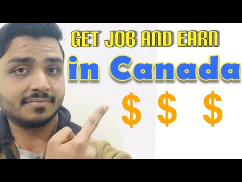 How To Get Job In Canada As A Veternary Doctor, After Doing DVM In Pakistan || Complete Information