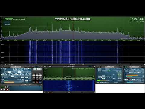 Radio Guinée Conakry, 9650 kHz, 22 September 2017, 23:05 UTC