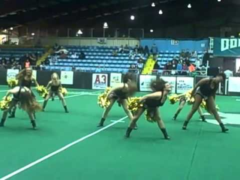 Chicago Blitz Dancers- First Game
