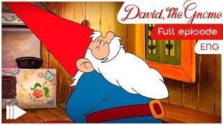 David, the Gnome - 06 - The wedding