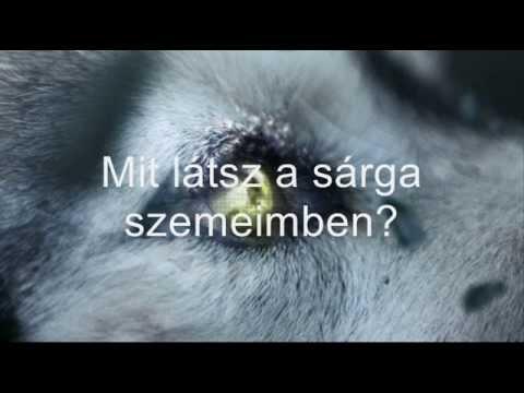 David Guetta ft Sia - She Wolf (magyar)
