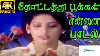 thotathu-pookkal-s-p-b-abinaya-love-melody-h-d-song