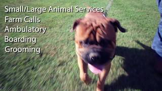 Southcentral Veterinary Services
