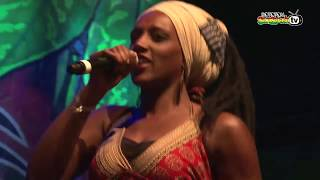 MO'KALAMITY & The Wizards live @ Main Stage 2014