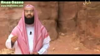 Истории о пророках: Салих (а.с.)(Видео-передача «Истории о пророках», ведущий Набиль аль-Авады, рассказывает истории пророков, начиная с..., 2011-09-13T12:20:10.000Z)