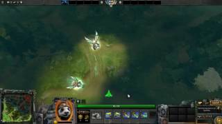 Dota 2 Unusual Captain Bamboo Bleak Hallucination Tnim S'nnam