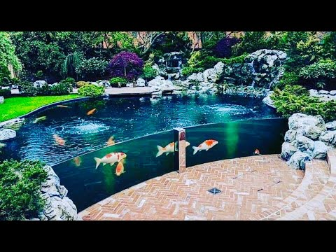 Most Amazing Backyards the most beautiful backyard fish ponds in the world - youtube
