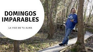 LA VOZ DE TU ALMA - DOMINGOS IMPARABLES Video