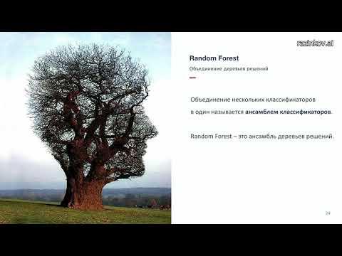"""Евгений Разинков. Лекция 7. Random Forest (курс """"Машинное обучение"""", весна 2019)"""