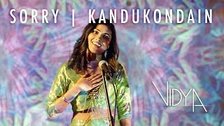 Subscribe for more vidya: http://bit.ly/1odhvbo | bookings: pushpa@vidyavox.com official video d.c. based singer and songwriter vidya vox's 2015 mashup c...
