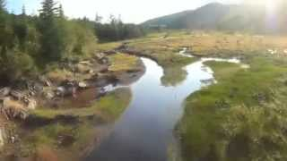 Swamp FPV Race Drone Circuit 285 QuadCop...