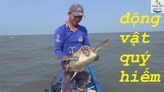 25 | Ra biển thăm câu không ngờ lại dính được con này | Fishing