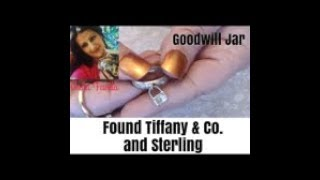 Goodwill Jewelry Jar- Tiffany & CO.  925 Sterling, 925 ,Gold and silver tone and more Unicorn