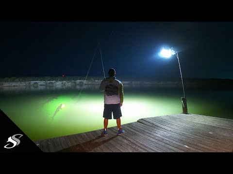 You Wont Believe The Fishing On This Pier!